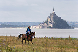Ellen Suhr Ydsteb, (NOR), Shah Nahim<br /> Alltech FEI World Equestrian Games™ 2014 - Normandy, France.<br /> © Hippo Foto Team - Leanjo de Koster<br /> 25/06/14