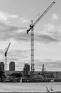 http://Duncan.co/two-cranes-and-two-geese