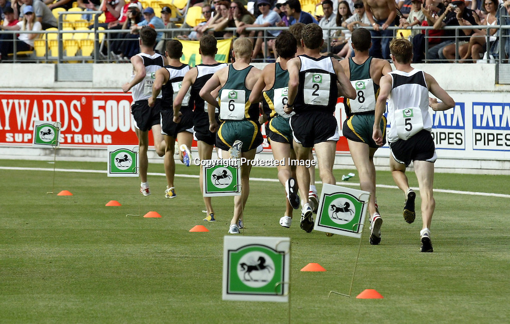 8 January 2003, Westpac Trust Stadium, Wellington, New Zealand. New Zealand v India. 5th One Day International cricket match. <br />
