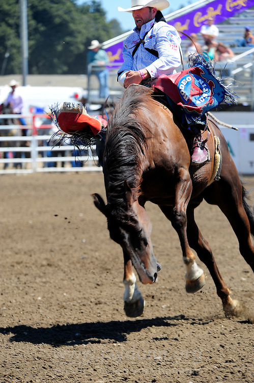 Brian Bain from Culver, Oregon rides to a score of 79 in the bareback bronc riding section of the 102nd California Rodeo Salinas, which opened July 19 for a four-day run.