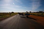Uberaba_MG, Brasil...BR 050 em Uberaba, Minas Gerais...BR 050 em Uberaba, Minas Gerais...Foto: LEO DRUMOND / NITRO