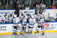 KELOWNA, CANADA - FEBRUARY 27: Head coach Brad Ralph stands on the bench and watches the replay of the Kelowna Rockets against the Spokane Chiefson February 27, 2016 at Prospera Place in Kelowna, British Columbia, Canada.  (Photo by Marissa Baecker/Shoot the Breeze)  *** Local Caption *** Brad Ralph;