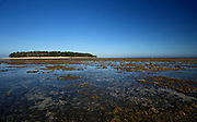 low tide, green island, great barrier reef