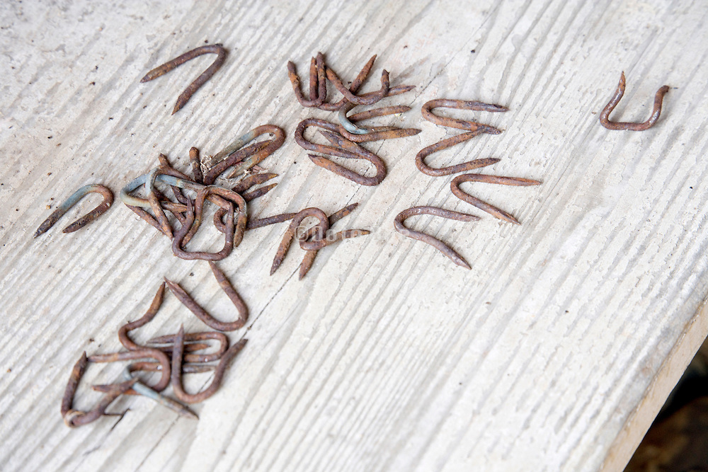 old rusty U nails on wooden plank