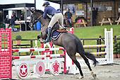 Codham Park Equestrian Centre
