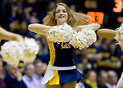 February 11, 2010; Berkeley, CA, USA;  A California Golden Bears cheerleader performs during the second half against the Washington Huskies at the Haas Pavilion.  California defeated Washington 93-81.