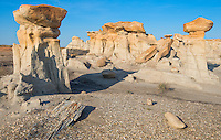 Hoodoos of the Ah-she-sle-pah Wilderness area at New Mexico. Observe the large petrified wood trunk on the left corner !