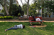 23rd September 2015, New Delhi. Men sleep in a park in New Delhi, India on the 23rd September 2015<br /> <br /> Sleeping in the outdoors is common in Asia due to a warmer climate and the fact that personal privacy for sleep is not so culturally ingrained as it is in the West. New Delhi (where most of these images were taken) is a harsh city both in climate and environment and for those working long hours, often in hard manual labour, sleep and rest is something fallen into when exhaustion overwhelms, no matter the place or circumstance. Then there are the homeless, in Delhi figures for them from Government and NGO sources vary wildly from 25,000 to more than 10 times that. Others public sleepers may simply be travellers having a siesta along the way.<br />  <br /> <br /> PHOTOGRAPH BY AND COPYRIGHT OF SIMON DE TREY-WHITE, photographer in Delhi<br /> <br /> + 91 98103 99809<br /> email: simon@simondetreywhite.com