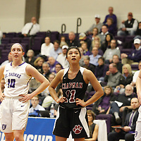Women's Basketball: University of St. Thomas (Minnesota) Tommies vs. Chapman University Panthers