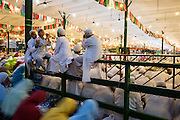 Dar es Salaam, Tanzania - 10/5/16 - Boys sit on a partition during prayers at the global gathering of approximately 30,000 members of the Dawoodi Bohra faith in Dar es Salaam on October 5, 2016. The Dawoodi Bohra are a Shia Muslim sect. Each year they gather in a different location to commemorate the death of Hussein, the grandson of the prophet Muhammad. Photo by Daniel Hayduk
