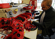© Licensed to London News Pictures. 07/11/2011. Richmond, UK. A worker assembles wreathes. Red Poppies being made in The Poppy Factory in preparation for sale in 2012, Richmond, Surrey today 7th November.  The factory has been supplying the poppy, crosses and wreathes to the British Legion for almost 90 years. It is staffed by veterans, many whom of which are injured, sick or wounded of all ages. Photo credit : Stephen Simpson/LNP