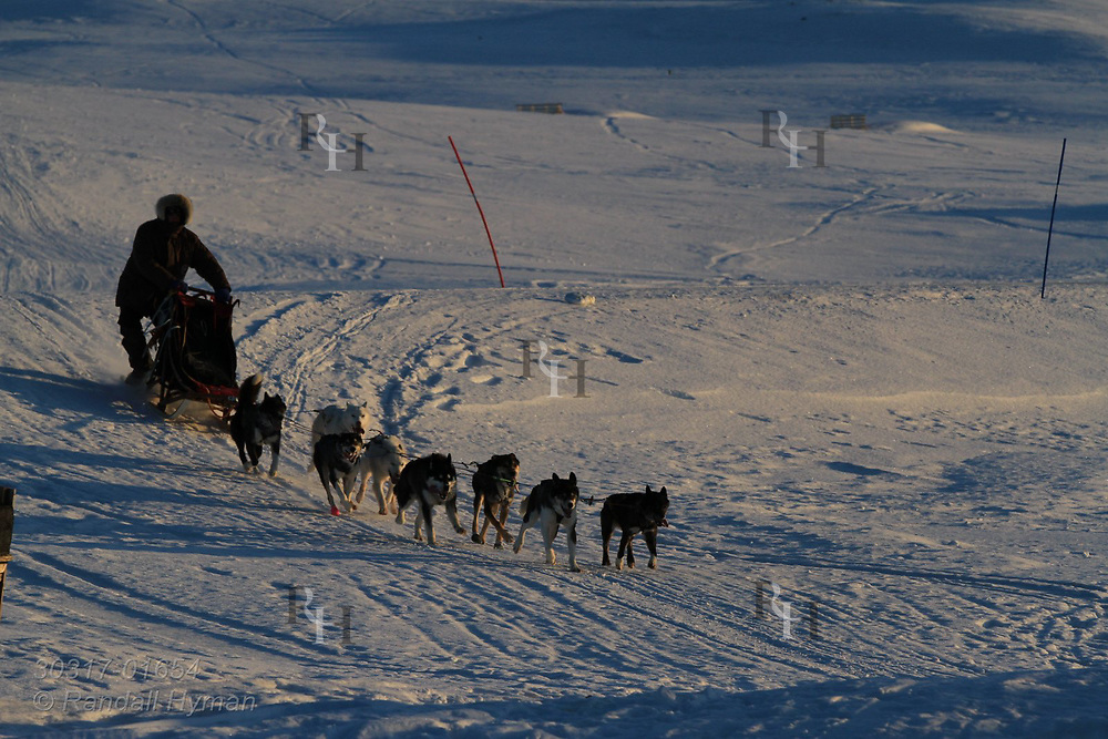 Man drives team of sled dogs at the international science village of Ny-Alesund on Spitsbergen island in Kongsfjorden; Svalbard, Norway.