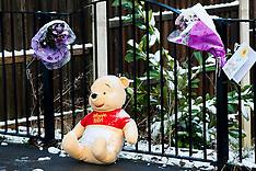 Murder Beck Rd Shiregreen Sheffield