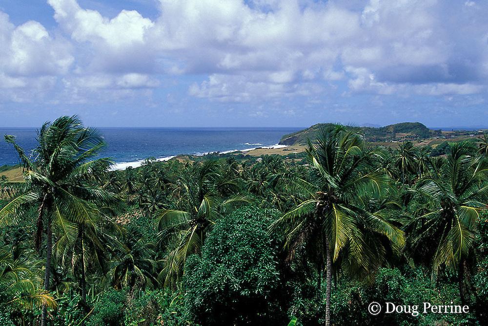 southeast coast, Saint Vincent,  St. Vincent & the Grenadines, West Indies ( Eastern Caribbean Sea )