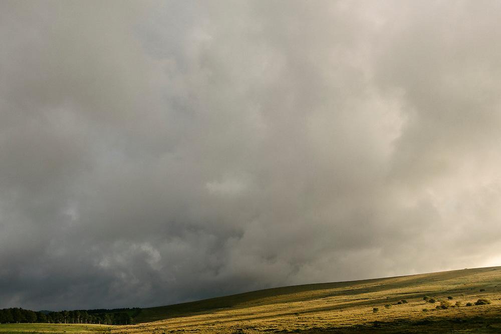 Landscape in Dartmoor National Park.