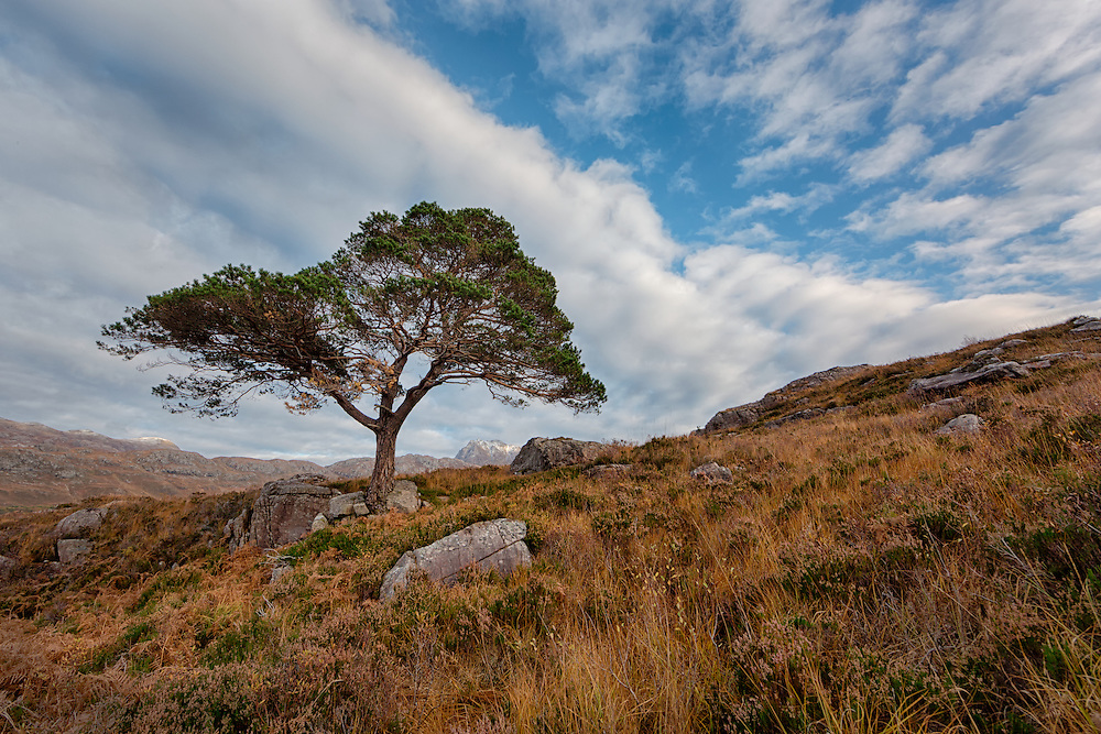 Loch Maree, Wester Ross in the Northwest Highlands of Scotland