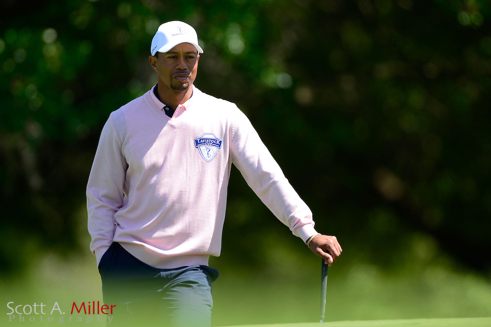 Tiger Woods of the U.S. waits to putt on the 13th hole during the 2013 Tavistock Cup golf tournament  at Isleworth Golf and Country Club in Windermere, Florida March 26, 2013. ©2013 Scott A. Miller