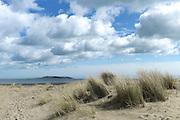 Malahide sand dunes, Dublin looking across to Lambay Island. Ireland