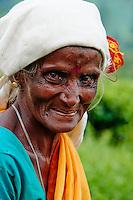 Sri Lanka, province de l'Uva, Haputale, cueillette du thé dans les plantations de thé près de Lipton's Seat, cueilleuses tamoules // Sri Lanka, Ceylon, Central Province, Haputale, tea plantation in the Highlands near Lipton's seat, Tamil women tea picker