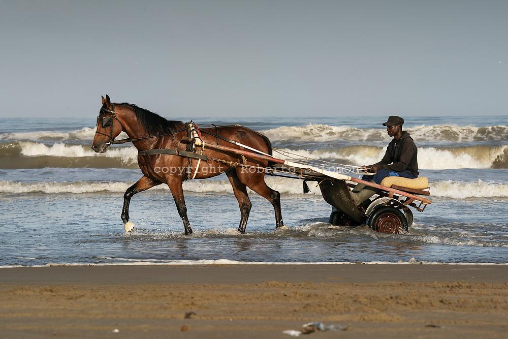 Litorale Domizio, Licola - Cavalli si allenano sulla spiaggia dle litorale domizio.<br /> Ph. Roberto Salomone