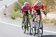 Bauke Mollema (NED - Trek - Segafredo), Simon Clarke (AUS - EF Education First - Drapac) during the UCI World Tour, Tour of Spain (Vuelta) 2018, Stage 5, Granada - Roquetas de Mar 188,7 km in Spain, on August 29th, 2018 - Photo Luis Angel Gomez / BettiniPhoto / ProSportsImages / DPPI