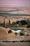 West bank; oasis in desert of Judea  jericho  Israel     ///  ///   /// West bank; oasis au milieu du désert de Judée  jericho  Israel   ///  ///     L931002a  /  R00061  /  P116512