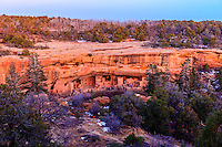 Overview of Spruce Tree House, Mesa Verde National Park, Colorado USA