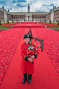A bagpipe tribute played by Chelsea Pensioner Michael Shanahan - 5000 Poppies, startes as a tribute by Lynn Berry and Margaret Knight to their fathers who fought in WW2 and, with the help of creative Director Phillip Johnson, became a project where over 50000 contributors submitted more than a quarter of a million hand knitted poppies.