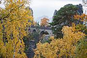 Basteibrücke, Nebel, Die Bastei, Sächsische Schweiz, Elbsandsteingebirge, Sachsen, Deutschland | Bastei Bridge, Bastei, fog, Saxon Switzerland, Saxony, Germany