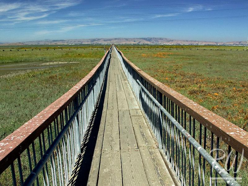 Boardwalk at Palo Alto Baylands, California