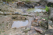SAVEOCK WATER, CORNWALL, ENGLAND - AUGUST 02: A view from above of Neolithic spring and winter pools on August 2, 2008 in Saveock Water, Cornwall, England.  The winter pool containing with a stone lined bath is in the foreground. The Spring pool is in the background. Excavated by archaeologist Jacqui Wood and her team. (Photo by Manuel Cohen)