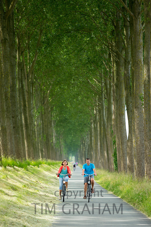 Adult cyclists riding bicycles canaliside at Damme, province of West Flanders in Belgium