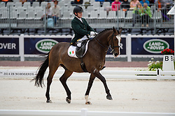 James Dwyer, (IRL), Orlando - Individual Test Grade IV Para Dressage - Alltech FEI World Equestrian Games™ 2014 - Normandy, France.<br /> © Hippo Foto Team - Jon Stroud <br /> 25/06/14