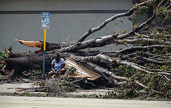September 11, 2017 - West Palm Beach, Florida, U.S. - The bench at a bus stop on S. Dixie Highway near W. Summa Street in West Palm Beach is twisted beneath a fallen tree after Hurricane Irma Monday,. (Credit Image: © Bruce R. Bennett/The Palm Beach Post via ZUMA Wire)