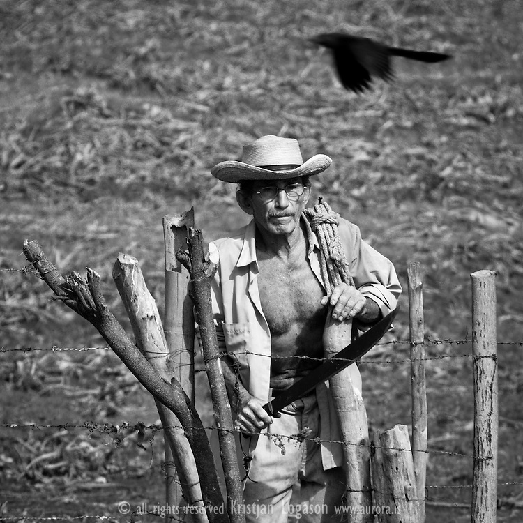 Old farmer with machete and carrying bundle of rope on his shoulder, walking in a field in Suchitoto El Salvador while a crow is flying by