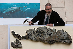 The fossilised skeleton of a Jurassic sea creature from the Ichthyosaurs family found on Skye in 1966 has been unveiled at the National Museum of Scotland by scientists for the first time. Named the Storr Lochs Monster, it is the most complete skeleton of a sea-living reptile from the dinosaur age ever to be found in Scotland and has been extracted from the rock that encased it for millions of years.<br /> <br /> A partnership between the University of Edinburgh, National Museums of Scotland and every company SSE has enabled the fossil to be extracted from the rock that encased it for millions of years.<br /> <br /> Pictured: Allan Gillies (son of Norris Gillies who found the fossil in 1966) with an artists impression of the Storr Lochs Monster