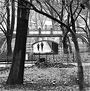 A Winter Walk In The Park, Central Park, New York City