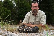 Timber Rattlesnake (Crotalus horridus) - Black morph<br /> & Chris Jenkins<br /> Northern Georgia<br /> USA<br /> HABITAT & RANGE: Deciduous forests in rugged terrain and open, rocky ledges. Eastern USA