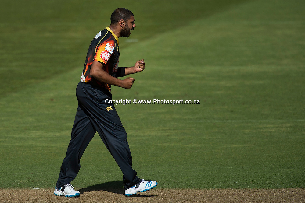 Jeetan Patel of the Firebirds celebrates bowling out Ben Wheeler of the Stags during the Georgie Pie Super Smash Firebirds v Stags cricket match at the Westpac Stadium in Wellington on Sunday the 23rd of November 2014. Photo by Marty Melville/www.Photosport.co.nz