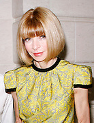 Anna Wintour poses at 'The Model as  Muse: Embodying Fashion' Press conference at the Costume Institute in the Metropolitan Museum of Art  New York City, USA on May 4, 2009