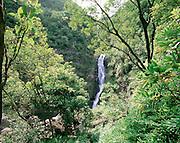 Moaula Falls, Molokai, Hawaii, USA<br />