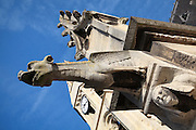 Gargoyle, pinnacle and bell tower, Collegiale Notre-Dame de Poissy, showing the Western bell tower and chapels of the North aisle, a catholic parish church founded c. 1016 by Robert the Pious and rebuilt 1130-60 in late Romanesque and early Gothic styles, in Poissy, Yvelines, France. Saint Louis was baptised here in 1214. The Collegiate Church of Our Lady of Poissy was listed as a Historic Monument in 1840 and has been restored by Eugene Viollet-le-Duc. Picture by Manuel Cohen