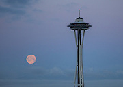 A nearly full moon is captured from Seattle's Capitol Hill as it sinks into the morning light over the Olympic Mountains. (Steve Ringman / The Seattle Times)