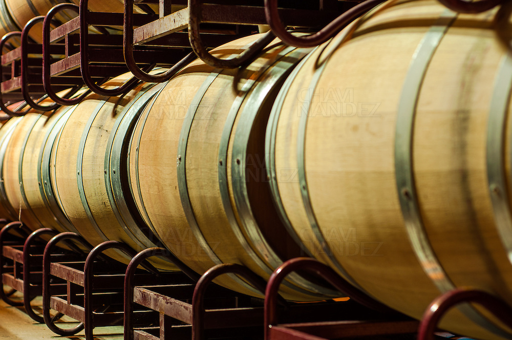 Wine Barrels Hall in Somontano winery. Barbastro. Huesca. Aragon. Spain.