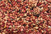 Red Beans. Mahebourg market.