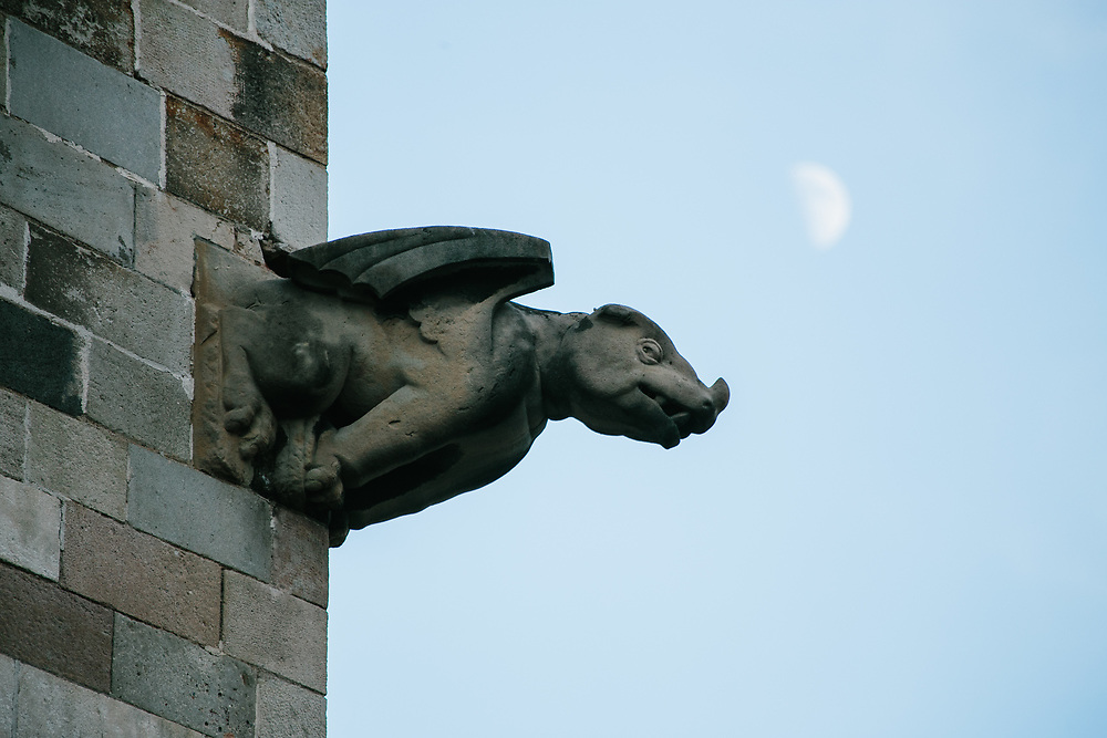 A grotesque (or maybe gargoyle -- can't tell if there is a spout) on the Cathedral