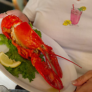 Lobster dinner at restaurants accessible either by boat or car offer al fresco dining by the Intracoastal Waterway in South Florida.  Photography by Jose More