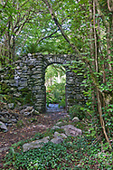 Drystone wall and gateway with Corylus avellana (common hazel) woodland