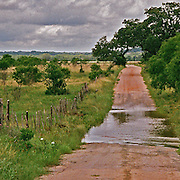 """A red dirt road runs off in the distance past a low water crossing and ending in the distance at a ranchers gate with his flag hoisted high. NOTE: Click """"Shopping Cart"""" icon for available sizes and prices. If a """"Purchase this image"""" screen opens, click arrow on it. Doing so does not constitute making a purchase. To purchase, additional steps are required."""