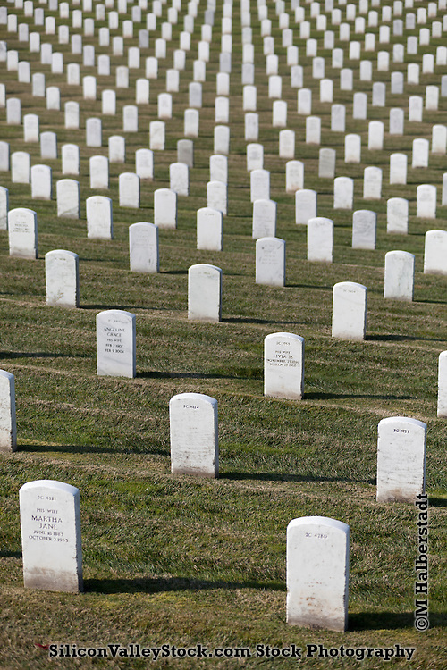 Golden Gate National Cemetery, San Bruno, California